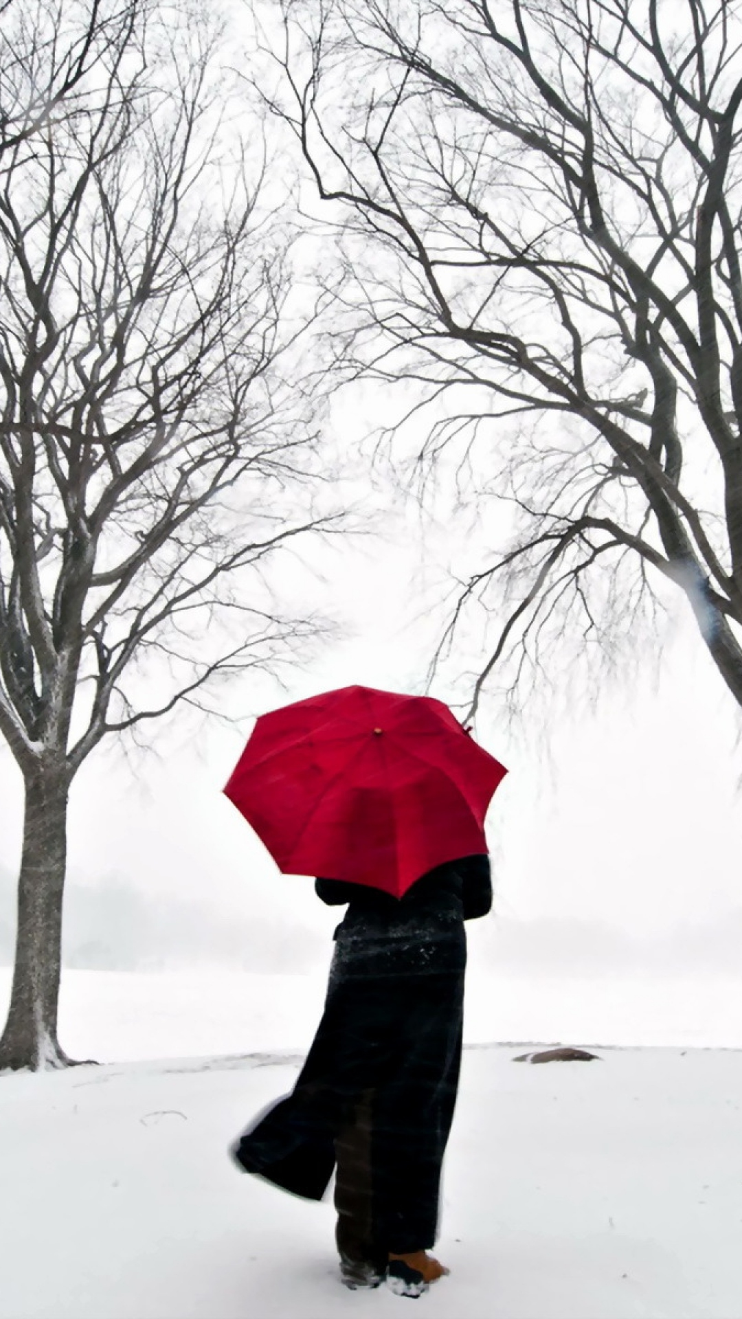 girl_umbrella_cherry_snow_japan_31460_1080x1920