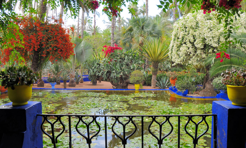 jardin-majorelle