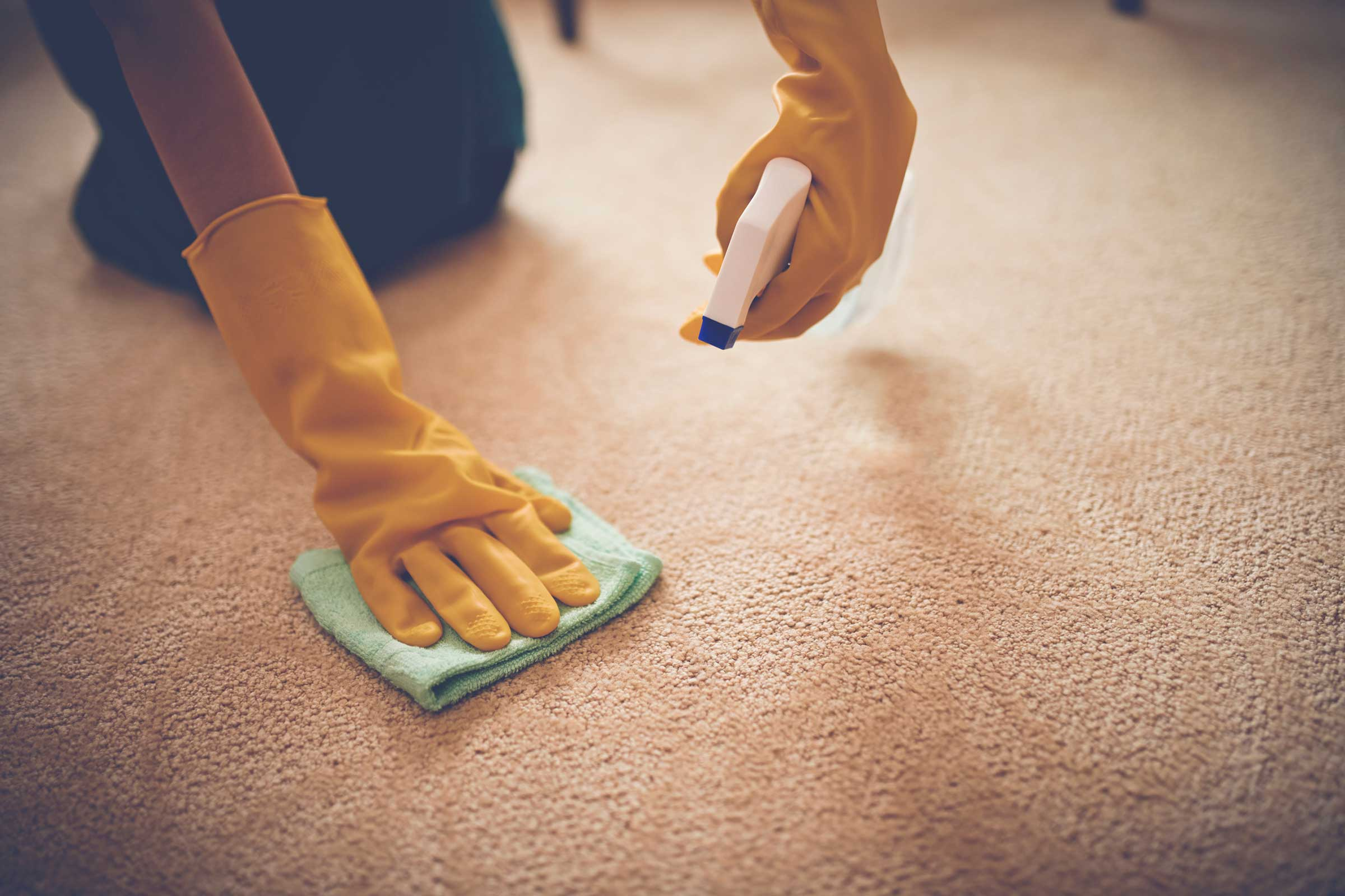 03_reasons_need_cornstarch_other_cooking_furniture_ink_stain_carpet_DragonImages